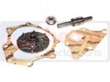 kit reparatie pompa apa ford 131-16